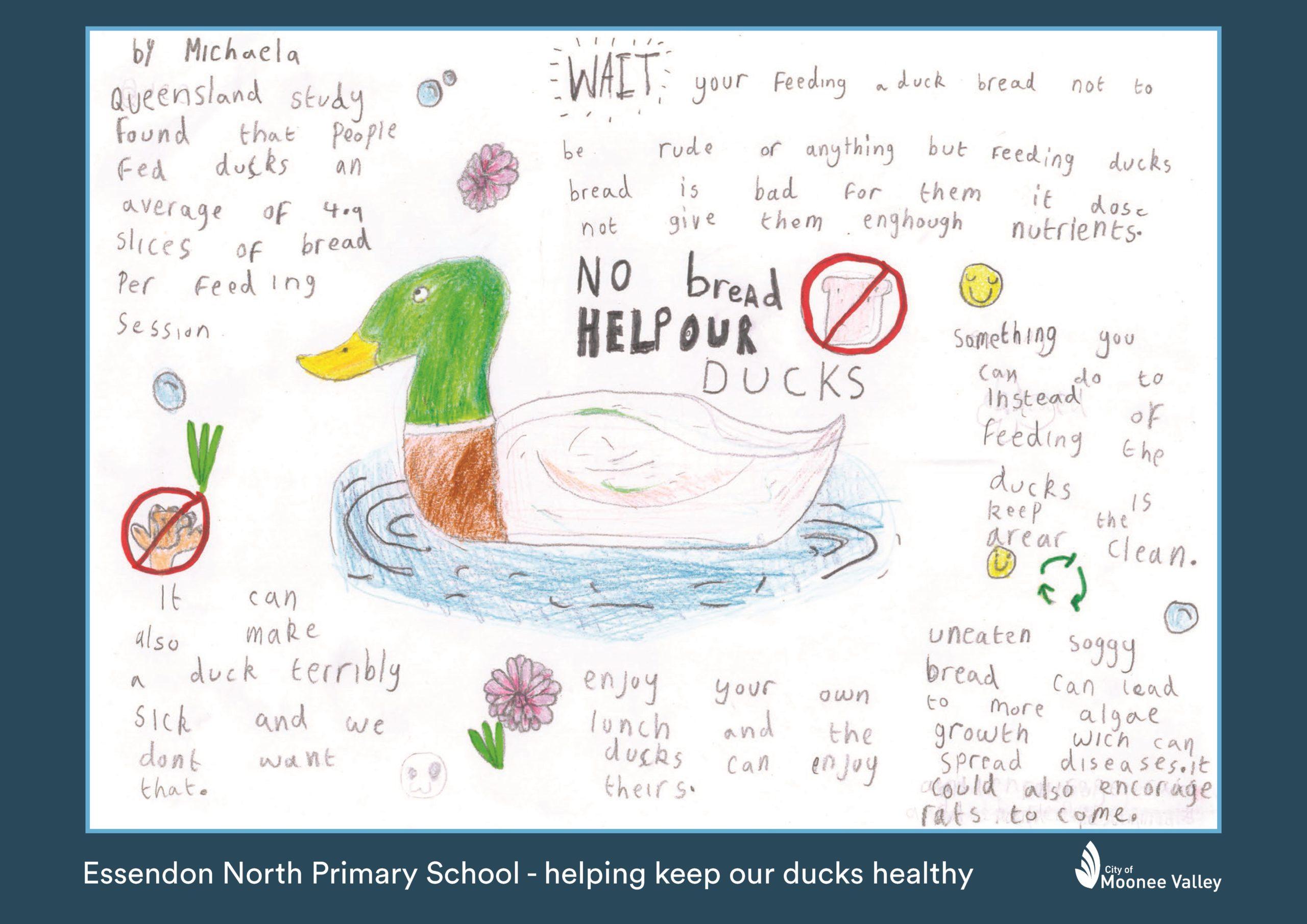 20 215052 ENPS Woodlands Park Duck Poster Michaela