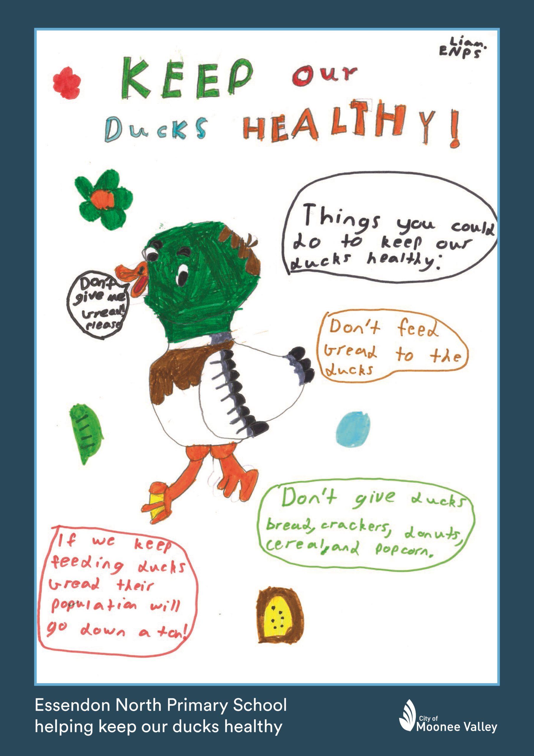 20 215099 ENPS Woodlands Park Duck Poster Liam