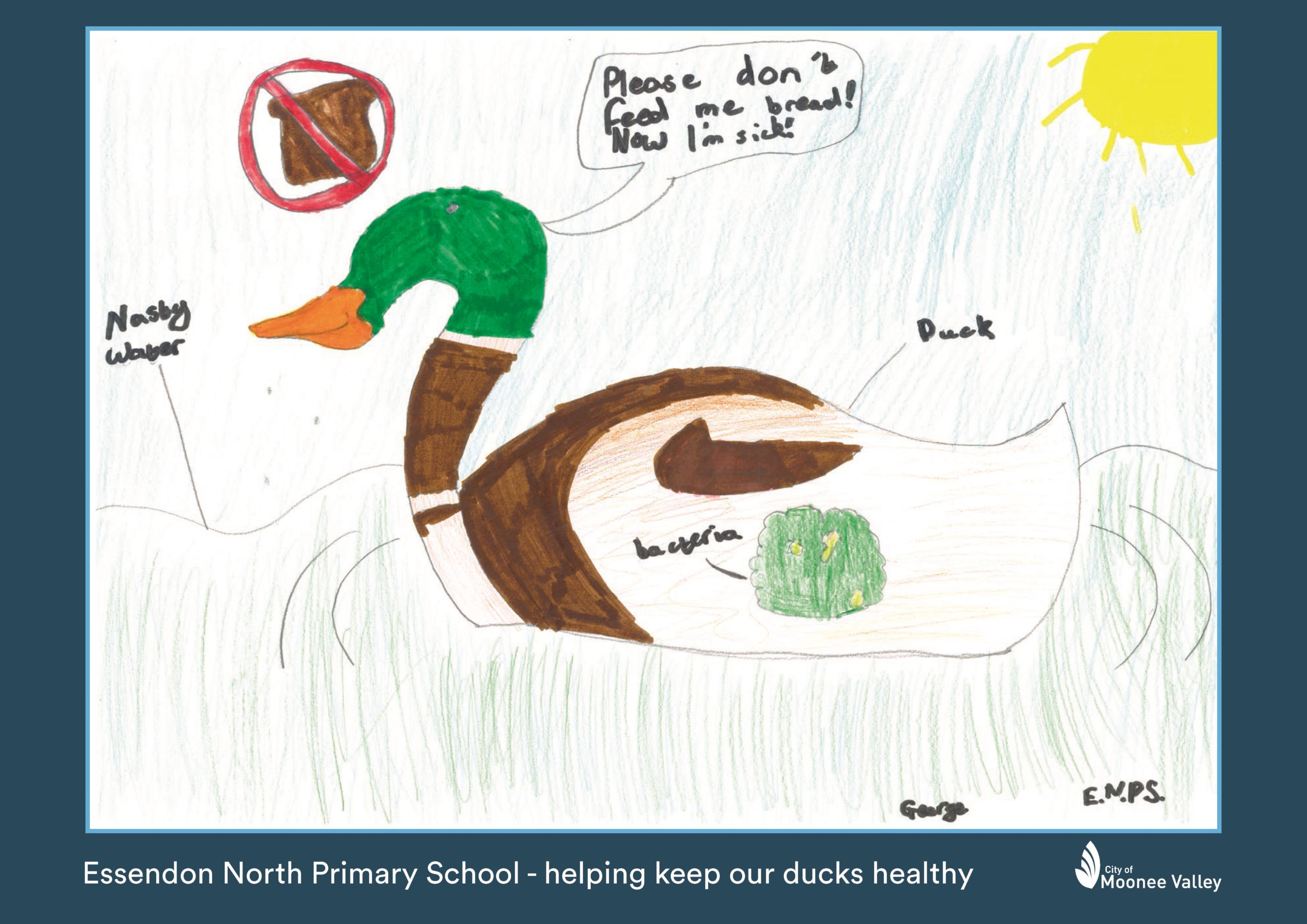 20 215125 ENPS Woodlands Park Duck Poster George