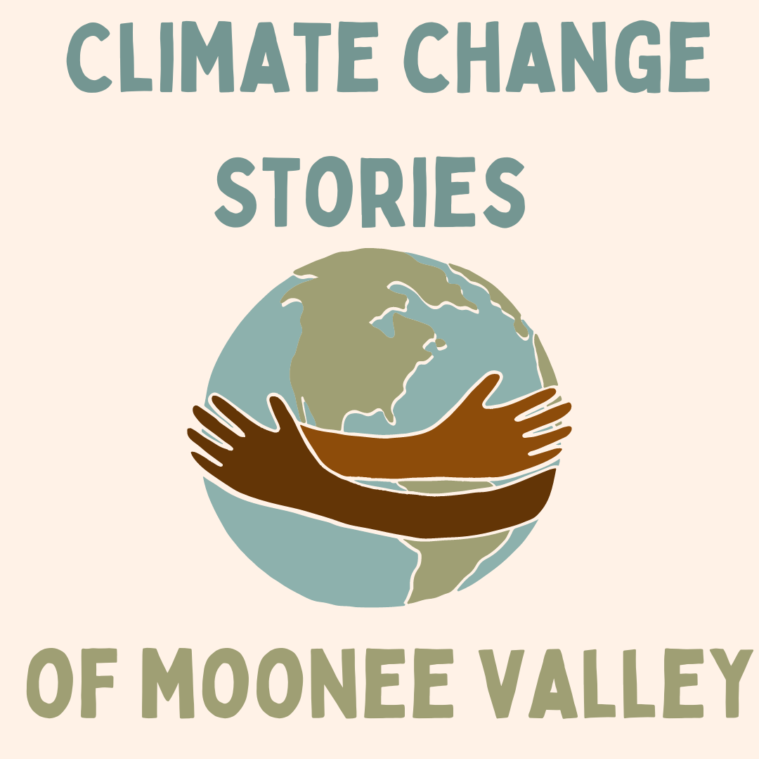 Climate Change Stories